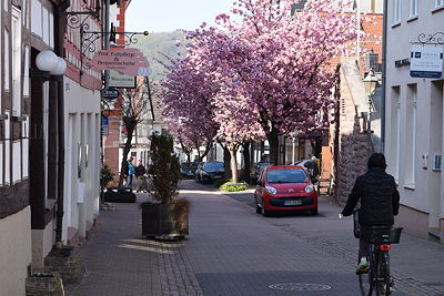 hofheim15