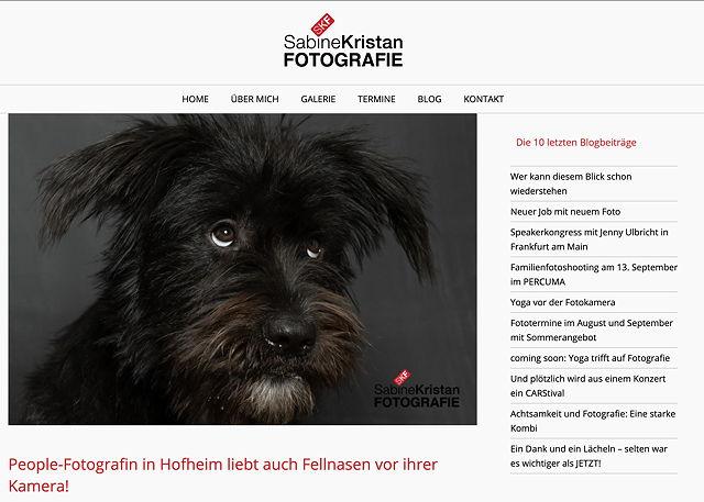 20201105 Hundefoto